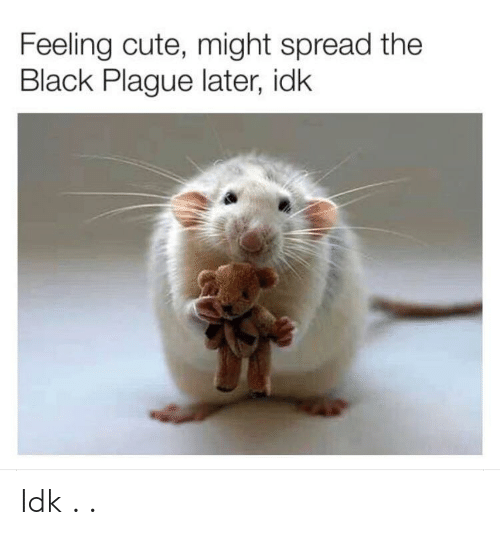 Cute, Black, and Plague: Feeling cute, might spread the  Black Plague later, idk Idk    . .