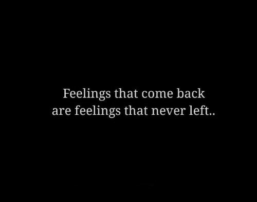 Never, Back, and Come Back: Feelings that come back  are feelings that never left..