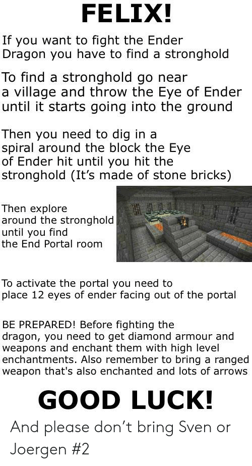 FELIX! If You Want to Fight the Ender Dragon You Have to