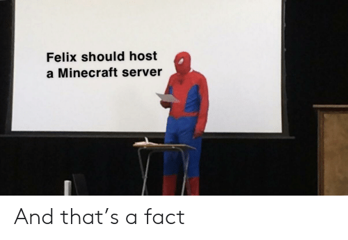 Felix Should Host a Minecraft Server and That's a Fact
