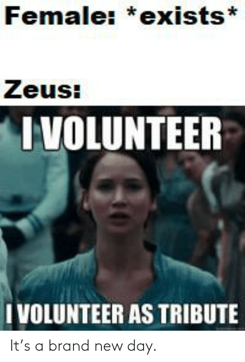 Female Exists Zeus I Volunteer I Volunteer As Tribute It S A Brand New Day Reddit Meme On Me Me I hereby volunteer to be placed at bottom tier for every match i play from here on out. female exists zeus i volunteer i