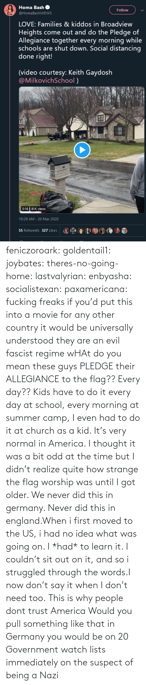 America, Church, and England: feniczoroark:  goldentail1:  joybates:  theres-no-going-home:  lastvalyrian:  enbyasha:  socialistexan:  paxamericana: fucking freaks       if you'd put this into a movie for any other country it would be universally understood they are an evil fascist regime    wHAt do you mean these guys PLEDGE their ALLEGIANCE to the flag?? Every day??   Kids have to do it every day at school, every morning at summer camp, I even had to do it at church as a kid. It's very normal in America. I thought it was a bit odd at the time but I didn't realize quite how strange the flag worship was until I got older.    We never did this in germany. Never did this in england.When i first moved to the US, i had no idea what was going on. I *had* to learn it. I couldn't sit out on it, and so i struggled through the words.I now don't say it when I don't need too.   This is why people dont trust America    Would you pull something like that in Germany you would be on 20 Government watch lists immediately on the suspect of being a Nazi