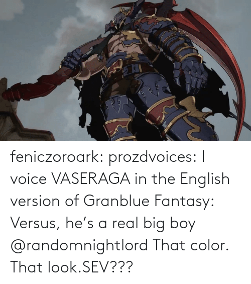 Tumblr, Blog, and Voice: feniczoroark:  prozdvoices:  I voice VASERAGA in the English version of Granblue Fantasy: Versus, he's a real big boy     @randomnightlord    That color. That look.SEV???