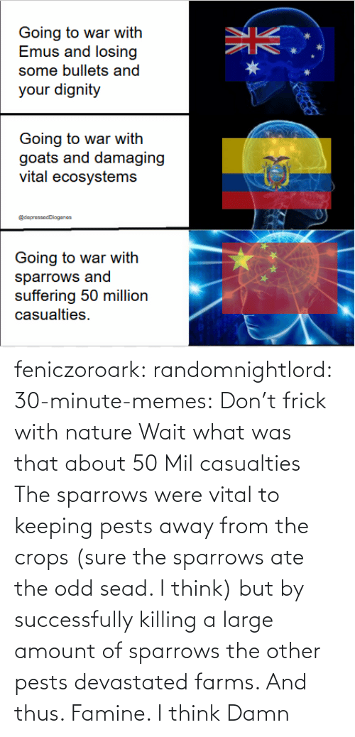 Frick, Memes, and Tumblr: feniczoroark:  randomnightlord:  30-minute-memes:  Don't frick with nature   Wait what was that about 50 Mil casualties    The sparrows were vital to keeping pests away from the crops (sure the sparrows ate the odd sead. I think) but by successfully killing a large amount of sparrows the other pests devastated farms. And thus. Famine. I think   Damn