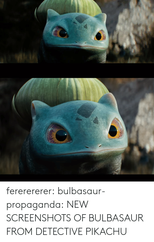 Bulbasaur, Gif, and Pikachu: fererererer:  bulbasaur-propaganda:  NEW SCREENSHOTS OF BULBASAUR FROM DETECTIVE PIKACHU