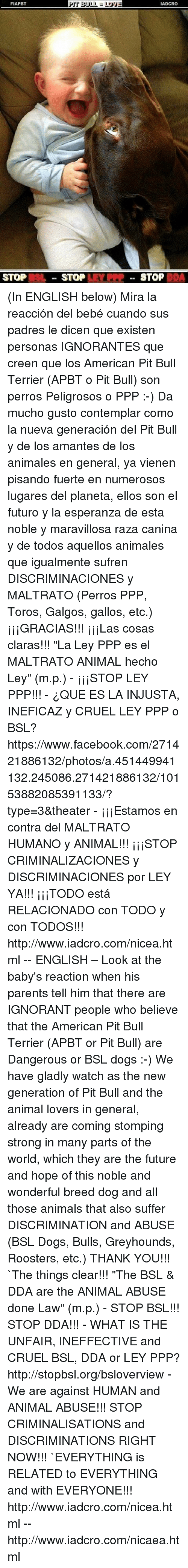funny icrc memes of 2017 on me me ignorant people animals dogs and facebook fiapbt stop pit bull stop lov iadcro stop dda