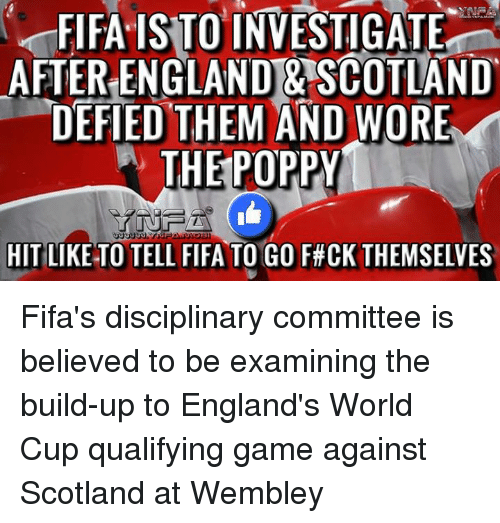 England, Fifa, and Memes: FIFA ISTO INVESTIGATE  AFTER ENGLAND & SCOTLAND  DEFIED THEM AND WORE  W THE POPPY  HIT LIKE TO TELL FIFA TO GO F#CK THEMSELVES Fifa's disciplinary committee is believed to be examining the build-up to England's World Cup qualifying game against Scotland at Wembley