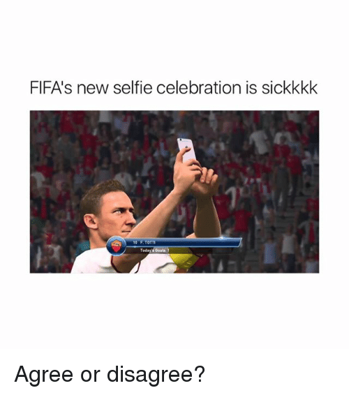 Goals, Memes, and Selfie: FIFA's new selfie celebration is sickkkk  10 F TOTTI  Today s Goals Agree or disagree?