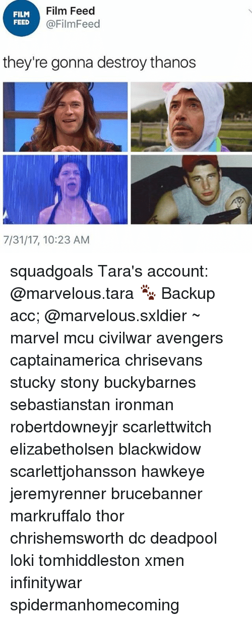 Memes, Deadpool, and Avengers: FILM  FEED  Film Feed  @FilmFeed  they're gonna destroy thanos  7/31/17, 10:23 AM squadgoals Tara's account: @marvelous.tara 🐾 Backup acc; @marvelous.sxldier ~ marvel mcu civilwar avengers captainamerica chrisevans stucky stony buckybarnes sebastianstan ironman robertdowneyjr scarlettwitch elizabetholsen blackwidow scarlettjohansson hawkeye jeremyrenner brucebanner markruffalo thor chrishemsworth dc deadpool loki tomhiddleston xmen infinitywar spidermanhomecoming