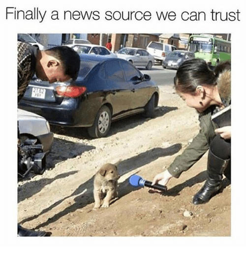 News, Girl Memes, and Source: Finally a news source we can trust