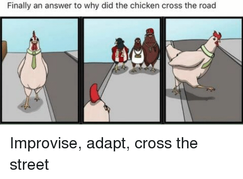 finally an answer to why did the chicken cross the road improvise