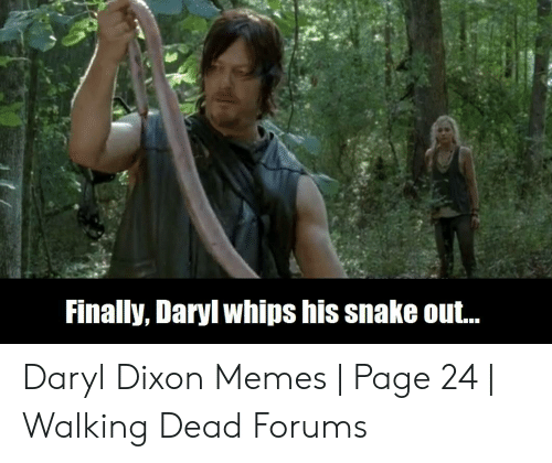Memes, Snake, and Walking Dead: Finally, Daryl whips his snake out.. Daryl Dixon Memes | Page 24 | Walking Dead Forums
