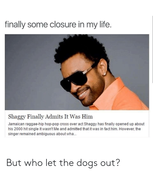 Dogs, Life, and Pop: finally some closure in my life.  Shaggy Finally Admits It Was Him  Jamaican raggae-hip hop-pop cross over act Shaggy has finally opened up about  his 2000 hit single It wasn't Me and admitted that it was in fact him. However, the  singer remained ambiguous about wha... But who let the dogs out?