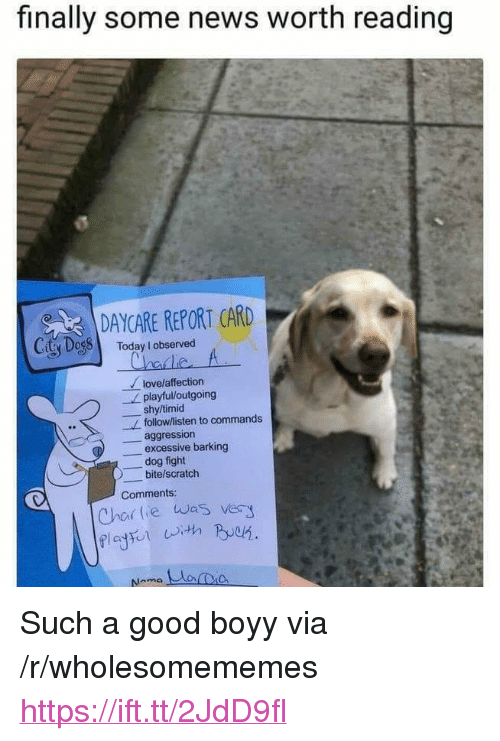 """News, Good, and Scratch: finally some news worth reading  DAYCARE REPORT CARD  CitSDessl  Today I observed  lovelaffection  shy/timid  aggression  playful/loutgoing  follow/listen to commands  -excessive barking  dog fight  bite/scratch  Comments  Chor lie was very <p>Such a good boyy via /r/wholesomememes <a href=""""https://ift.tt/2JdD9fl"""">https://ift.tt/2JdD9fl</a></p>"""