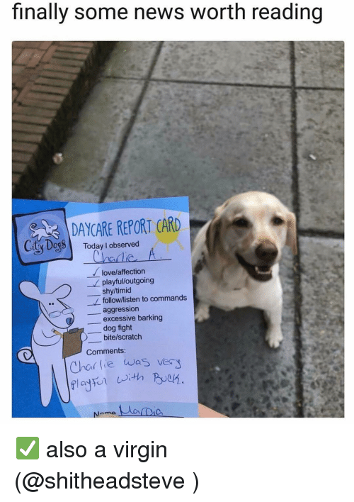 Charlie, Dogs, and Love: finally some news worth reading  DAYCARE REPORT CARD  Ciy DogS  Today l observed  Charlie  love/affection  playfulloutgoing  shy/timid  follow/listen to commands  _aggression  excessive barking  dog fight  bite/scratch  Comments  Char lie was vers ✅ also a virgin (@shitheadsteve )