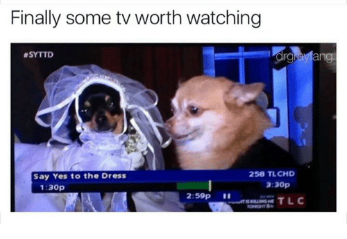 Memes, The Dress, and 🤖: Finally some tv worth watching  ding  8SYTTD  258 TLCHD  Say Yes to the Dress  3:30p  1:30p  2:59p  TLC