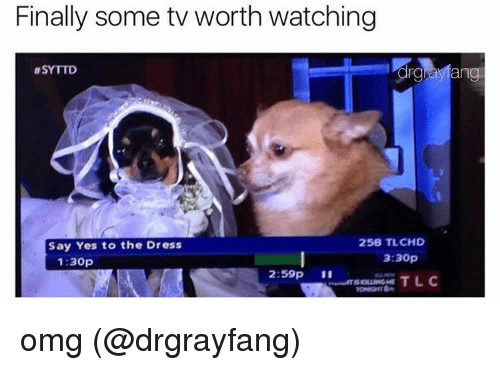 Memes, The Dress, and 🤖: Finally some tv worth watching  thSYTTD  ang  258 TL CHD  Say Yes to the Dress  3:30p  1:30p  2:59p  TLC omg (@drgrayfang)