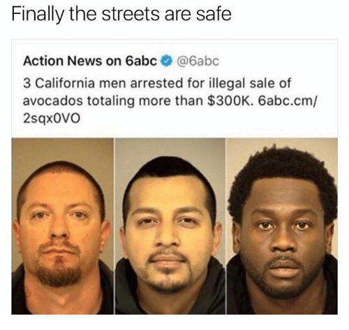 Dank, News, and Streets: Finally the streets are safe  Action News on 6abc  @6abc  3 California men arrested for illegal sale of  avocados totaling more than $300K. 6abc.cm/  2sqxovo