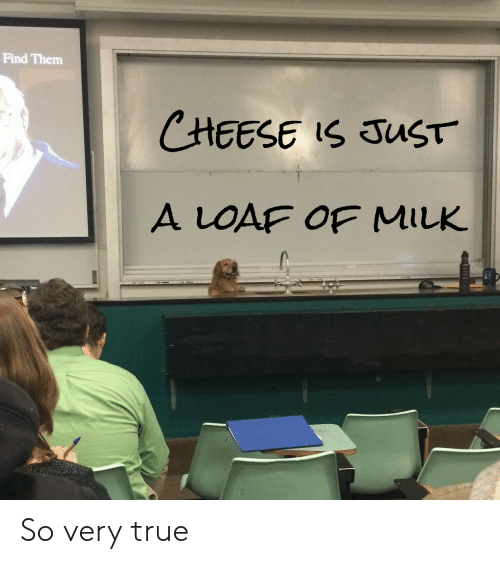 True, Cheese, and Milk: Find Them  CHEESE IS JUST  A LOAF OF MILK So very true