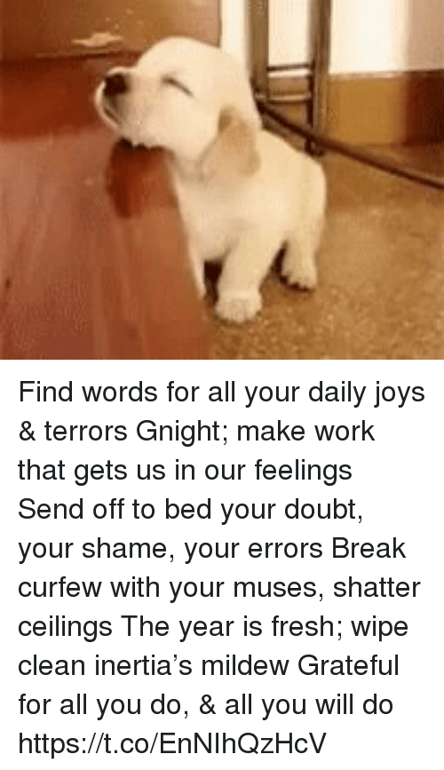 Fresh, Memes, and Work: Find words for all your daily joys & terrors Gnight; make work that gets us in our feelings Send off to bed your doubt, your shame, your errors Break curfew with your muses, shatter ceilings The year is fresh; wipe clean inertia's mildew Grateful for all you do, & all you will do https://t.co/EnNIhQzHcV