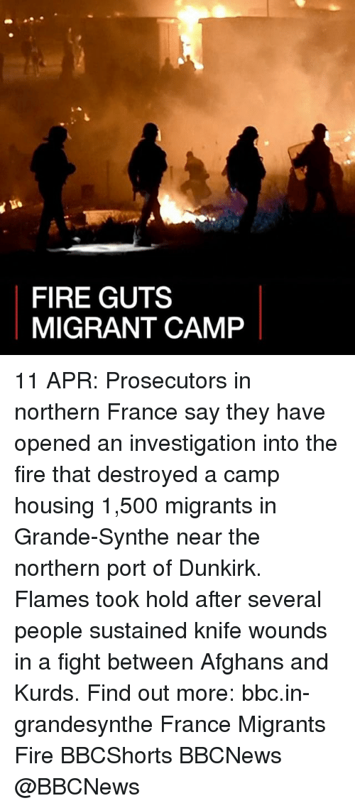Fire, Memes, and France: FIRE GUTS  MIGRANT CAMP 11 APR: Prosecutors in northern France say they have opened an investigation into the fire that destroyed a camp housing 1,500 migrants in Grande-Synthe near the northern port of Dunkirk. Flames took hold after several people sustained knife wounds in a fight between Afghans and Kurds. Find out more: bbc.in-grandesynthe France Migrants Fire BBCShorts BBCNews @BBCNews