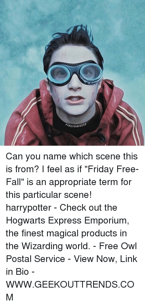 """Fall, Friday, and Memes: FIREFAWKESS Can you name which scene this is from? I feel as if """"Friday Free-Fall"""" is an appropriate term for this particular scene! harrypotter - Check out the Hogwarts Express Emporium, the finest magical products in the Wizarding world. - Free Owl Postal Service - View Now, Link in Bio - WWW.GEEKOUTTRENDS.COM"""