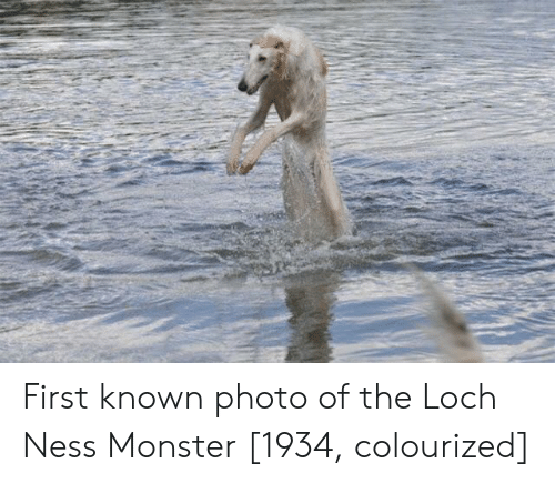 Loch Ness Monster, Monster, and Ness: First known photo of the Loch Ness Monster [1934, colourized]