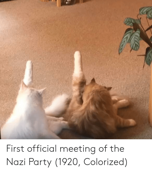 Party, Nazi, and Nazi Party: First official meeting of the Nazi Party (1920, Colorized)