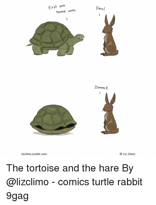 9gag, Memes, and Tumblr: First one  Dea /  home wins  Dammit.  lizclimo.tumblr.com  O Liz Climo The tortoise and the hare⠀ By @lizclimo⠀ -⠀ comics turtle rabbit 9gag