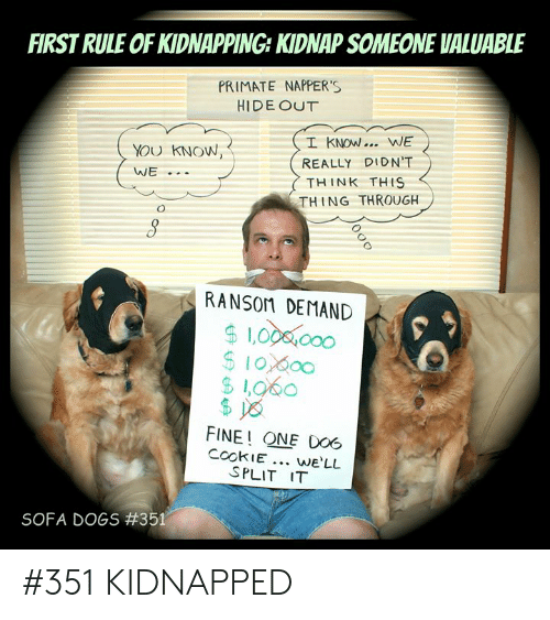 Dogs, Memes, and 🤖: FIRST RULE OF KIDNAPPING: KIDNAP SOMEONE VALUABLE  PRIMATE NAPPER'S  HIDE OUT  I KNOW.. WE  YOU KNOW,  REALLY DIDN'T  WE  THINK THS  THING THROUGH  RANSOM DEMAND  $1.00 000  $10,000  $1,060  $ 8  FINE! ONE DO6  CookIE. we'LL  SPLIT IT  SOFA DOGS # 351 #351 KIDNAPPED