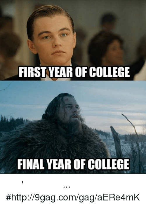 Funny Memes For Finals : Best memes about college final