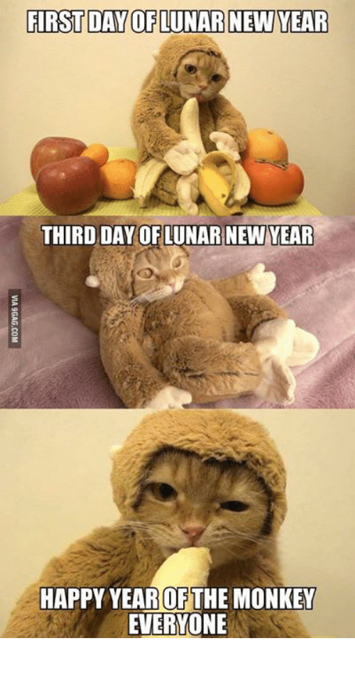 Dank, 🤖, and Third Day: FIRSTDAY OF LUNAR NEW YEAR  THIRD DAY OF LUNAR NEW YEAR  HAPPY YEAR OF THE MONKEY  EVERYONE 生生猛猛,萬事順境!