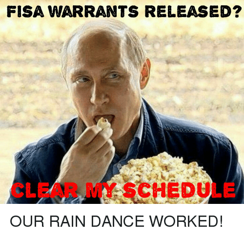 Rain, Schedule, and Dance: FISA WARRANTS RELEASED?  CLEAR MY SCHEDULE