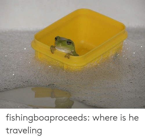 Tumblr, Blog, and Http: fishingboaproceeds: where is he traveling