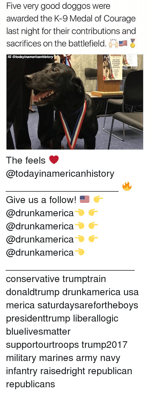 Memes, Pope Francis, and Army: Five very good doggos were  awarded the K-9 Medal of Courage  last night for their contributions and  sacrifices on the battlefield. WW  V/  MUMANE  ry  Lois Pope  K-9 Medal  ot Courge The feels ❤️ @todayinamericanhistory _____________________ 🔥Give us a follow! 🇺🇸 👉@drunkamerica👈 👉@drunkamerica👈 👉@drunkamerica👈 👉@drunkamerica👈 ________________________ conservative trumptrain donaldtrump drunkamerica usa merica saturdaysarefortheboys presidenttrump liberallogic bluelivesmatter supportourtroops trump2017 military marines army navy infantry raisedright republican republicans