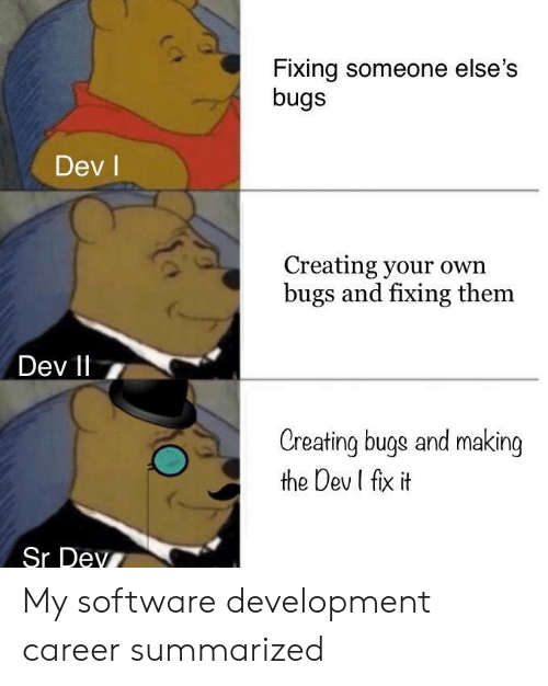 Software, Dev, and Own: Fixing someone else's  bugs  Dev l  Creating your own  bugs and fixing them  Dev 11 7  Creating buge and making  the Dev I fix it  Sr Dev My software development career summarized