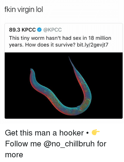 Funny, Hookers, and Lol: fkin virgin lol  89.3 KPCC @KPCC  This tiny worm hasn't had sex in 18 million  years. How does it survive? bit.ly/2gevjt7 Get this man a hooker • 👉Follow me @no_chillbruh for more