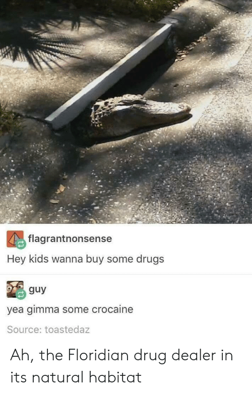 Drug Dealer, Drugs, and Kids: flagrantnonsense  Hey kids wanna buy some drugs  % guy  yea gimma some crocaine  Source: toastedaz Ah, the Floridian drug dealer in its natural habitat