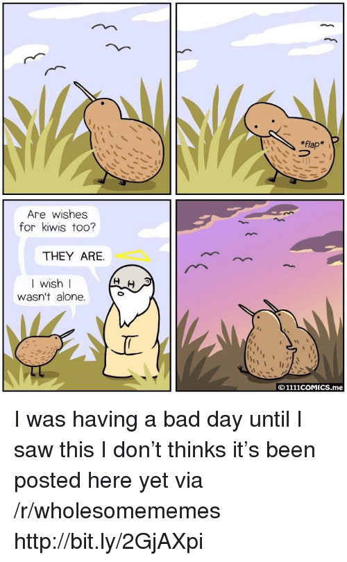 Being Alone, Bad, and Bad Day: *flap  Are wishes  for kiwis too?  THEY ARE.  I wish l  WIS  wasn't alone.  ©1111COMICS.me I was having a bad day until I saw this I don't thinks it's been posted here yet via /r/wholesomememes http://bit.ly/2GjAXpi