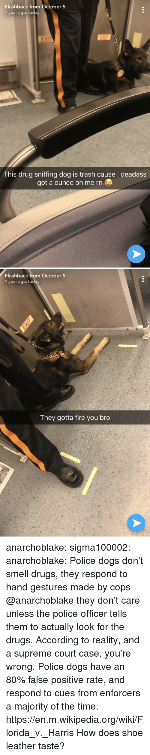 Dogs, Drugs, and Fire: Flashback from October 5  1 year ago, today  EXIT  This drug sniffing dog is trash cause deadass  got a ounce on me rn   Flashback from October 5  1 year ago, today  They gotta fire you bro anarchoblake: sigma100002:   anarchoblake:  Police dogs don't smell drugs, they respond to hand gestures made by cops  @anarchoblake they don't care unless the police officer tells them to actually look for the drugs.   According to reality, and a supreme court case, you're wrong.  Police dogs have an 80% false positive rate, and respond to cues from enforcers a majority of the time.  https://en.m.wikipedia.org/wiki/Florida_v._Harris How does shoe leather taste?