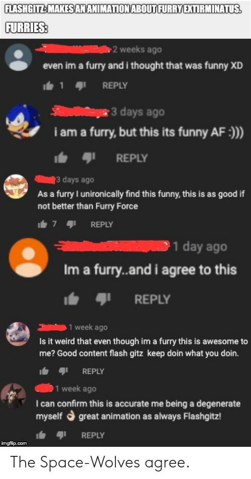 Af, Funny, and Weird: FLASHGITZ:MAKESAMANIMATION ABOUTFURRYEXTIRMINATUS  FURRIES  2 weeks ago  even im a furry and i thought that was funny XD  1 9 REPLY  3 days ago  i am a furry, but this its funny AF:)  I. ตุเ REPLY  3 days ago  As a furry I unironically find this funny, this is as good if  not better than Furry Force  7 REPLY  Im a furry..and i agree to this  b REPLY  1 week ago  Is it weird that even though im a furry this is awesome to  me? Good content flash gitz keep doin what you doin.  REPLY  1 week ago  I can confirm this is accurate me being a degenerate  myself d great animation as always Flashgitz  REPLY  imgflip.com The Space-Wolves agree.