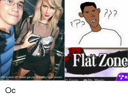 Flat zone this is what vip tickets get you at a taylor swift concert memes taylor swift and flat zone this is what vip tickets get m4hsunfo
