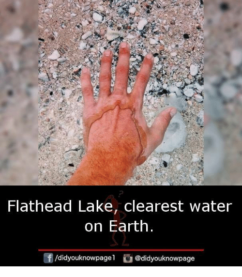 Memes, Earth, and Water: Flathead Lake, clearest water  on Earth  /didyouknowpagel @didyouknowpage