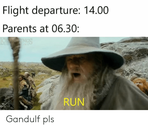 Parents, Run, and The Lord of the Rings: Flight departure: 14.00  Parents at 06.30:  RUN Gandulf pls