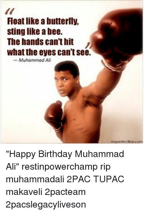 float like a butterfly sting like a bee the hands 12340938 ✅ 25 best memes about bees bees memes