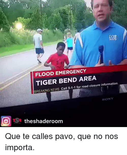 News, Sony, and Breaking News: FLOOD EMERGENCY  TIGER BEND AREA  BREAKING NEWS Call 5-1-1 for road closure information  SONY  theshaderoom <p>Que te calles pavo, que no nos importa.</p>