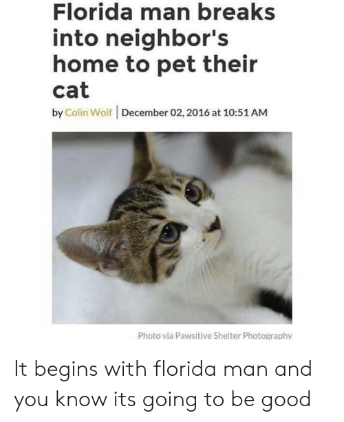 Florida Man, Florida, and Good: Florida man breaks  into neighbor's  home to pet their  cat  by Colin Wolf | December 02,2016 at 10:51 AM  Photo via Pawsitive Shelter Photography It begins with florida man and you know its going to be good