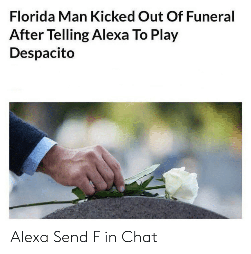 Florida Man, Chat, and Florida: Florida Man Kicked Out Of Funeral  After Telling Alexa To Play  Despacito Alexa Send F in Chat