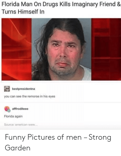 Drugs, Florida Man, and Funny: Florida Man On Drugs Kills Imaginary Friend  Turns Himself In  bestpresidentna  you can see the remorse in his eyes  afffroditeee  Florida again  Source: american-were.... Funny Pictures of men – Strong Garden