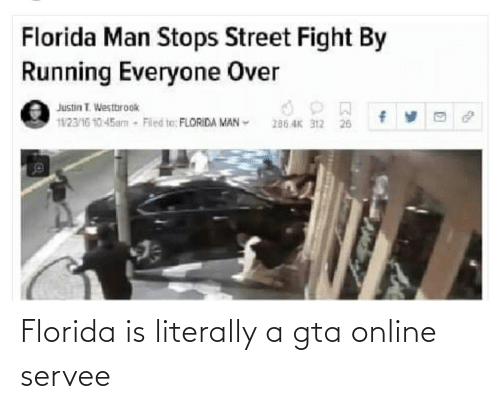 florida man stops street fight by running everyone over